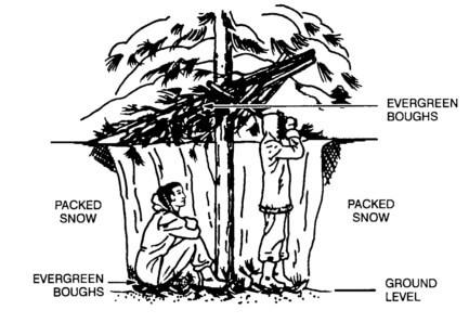 tree-pit snow shelter