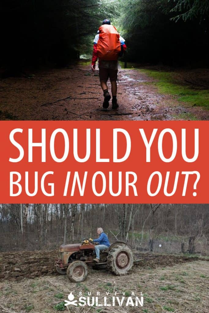 bugging in or out pinterest image