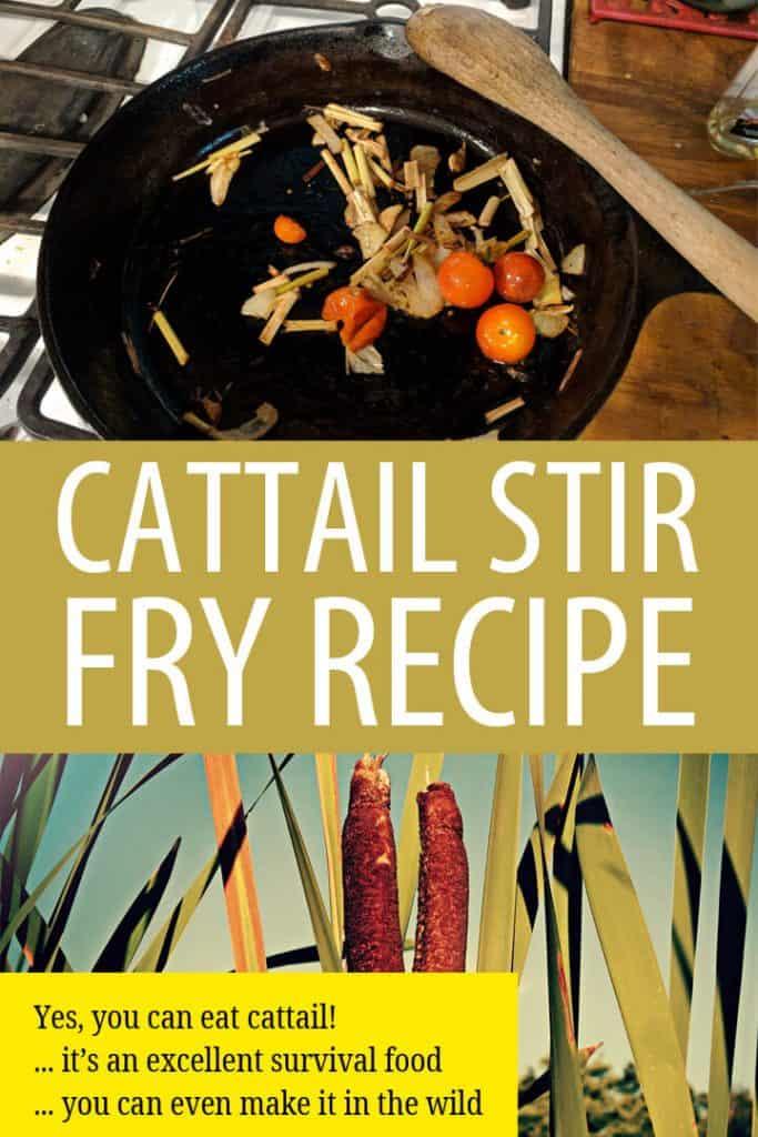 cattail stir fry recipe Pinterest image
