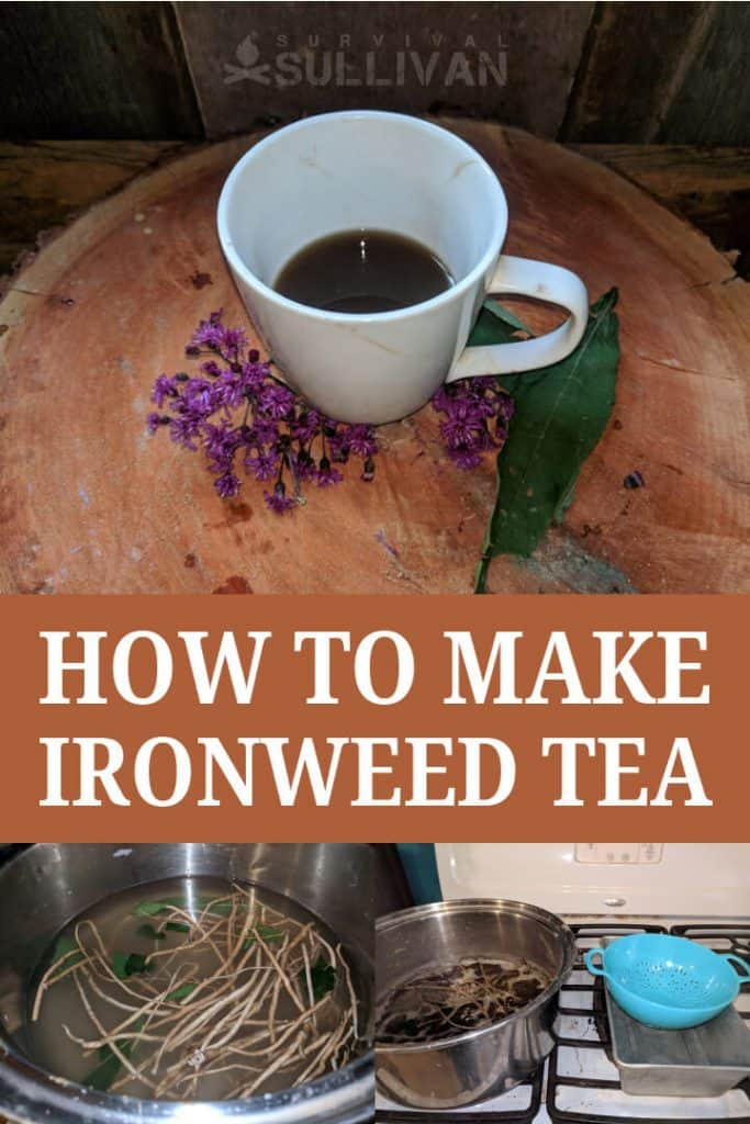 ironweed tea pinterest image