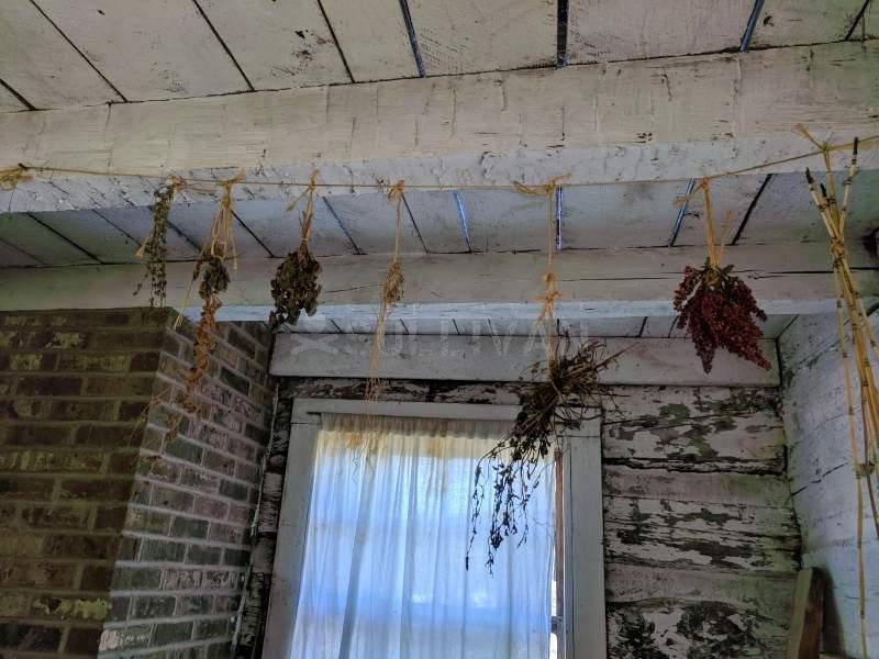 hang drying herbs