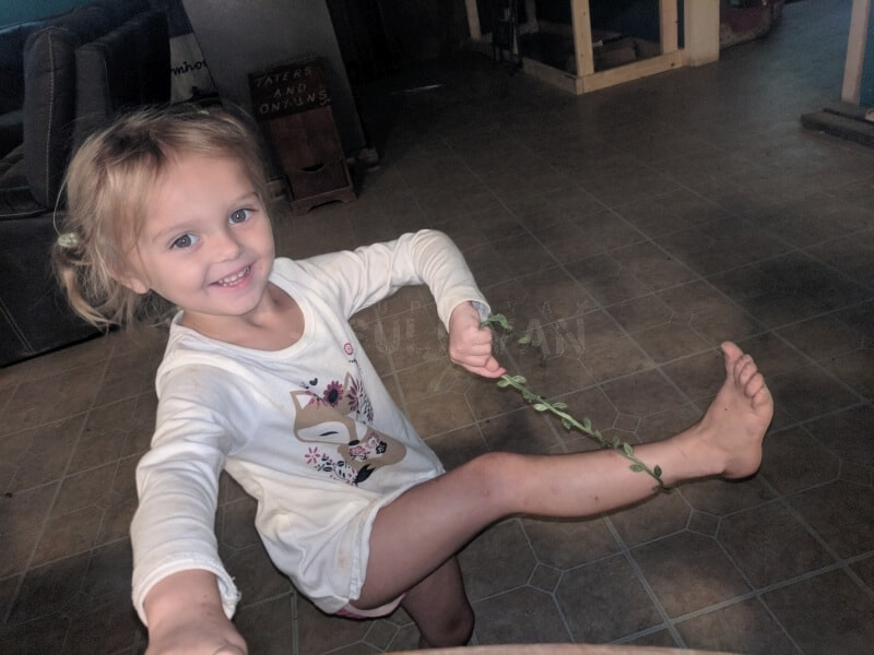 toddler with piece of fabric vine
