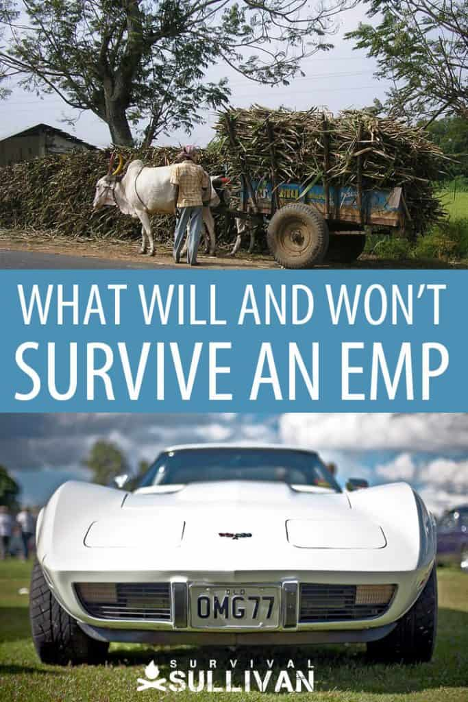 what will survive an emp Pinterest