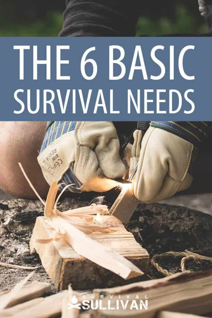 basic survival needs pinterest image
