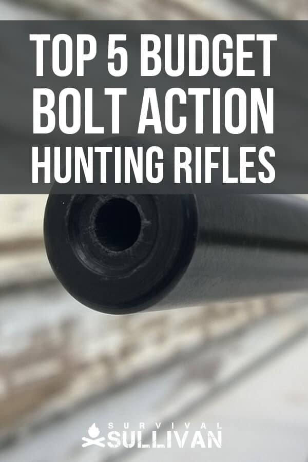 bolt action rifles pin