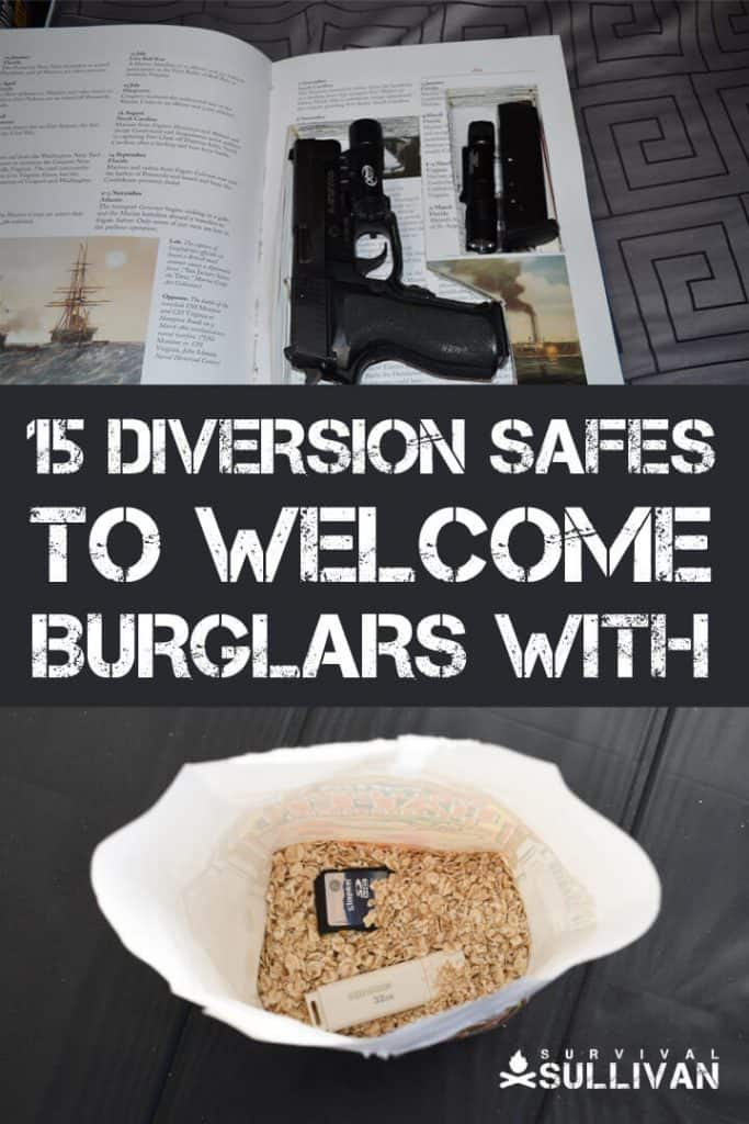 diversion safes Pinterest image
