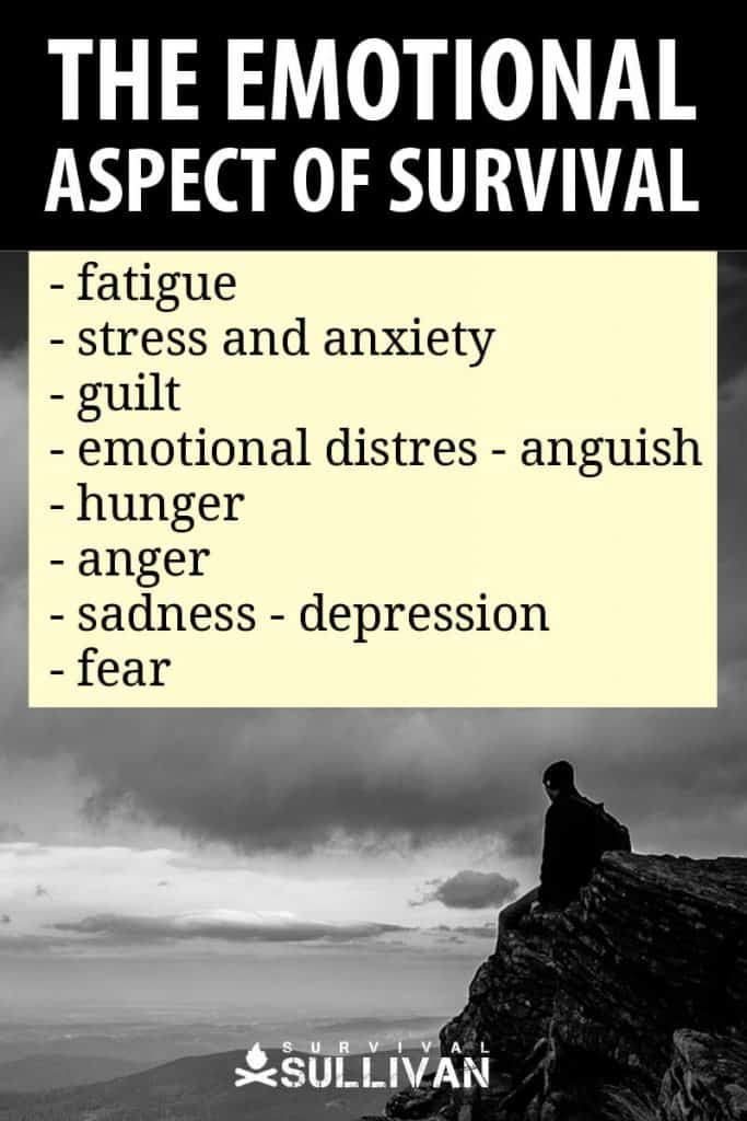 emotional survival Pinterest image