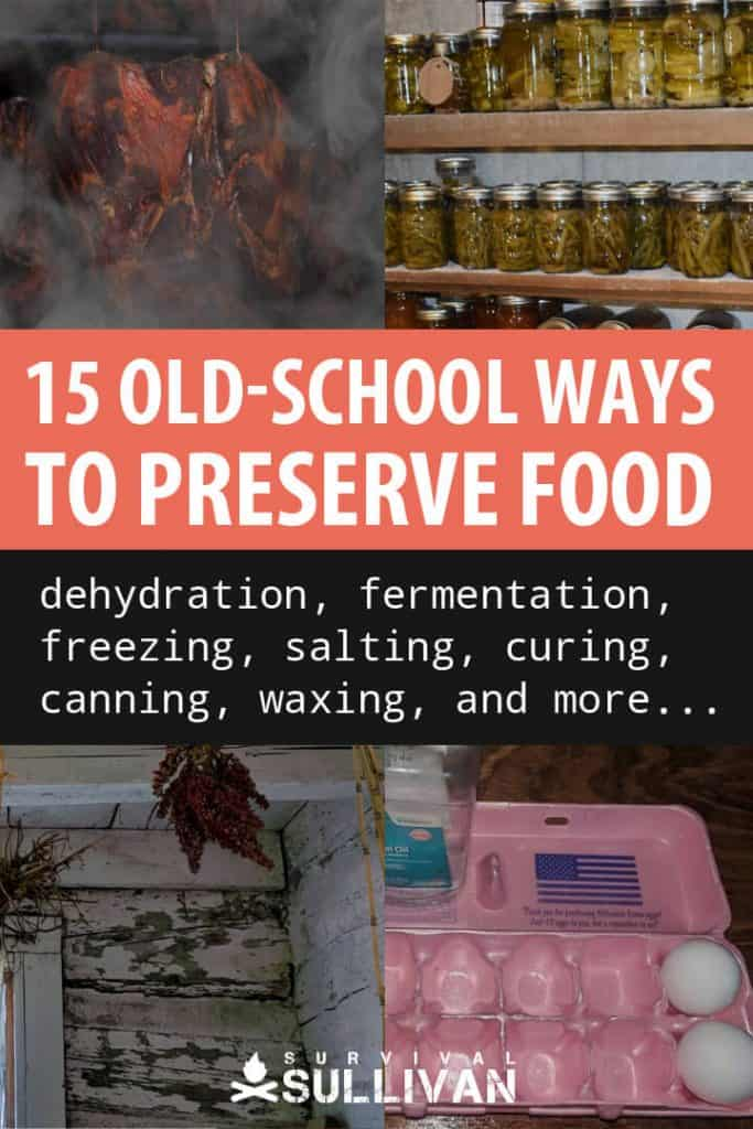 how to preserve food Pinterest image