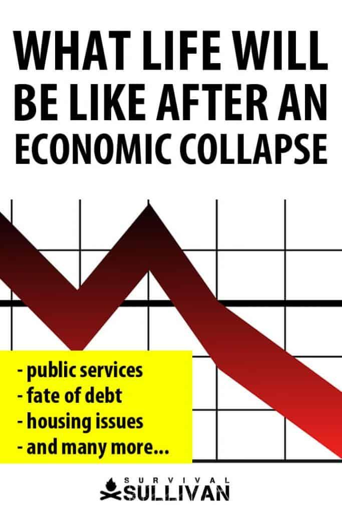 life after economic collapse Pinterest image