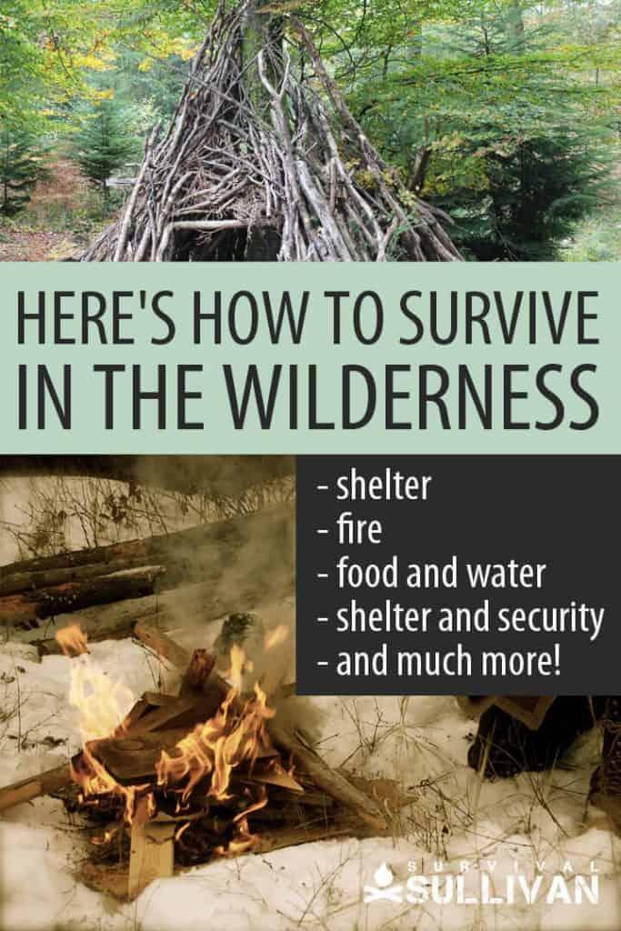 wilderness survival Pinterest image