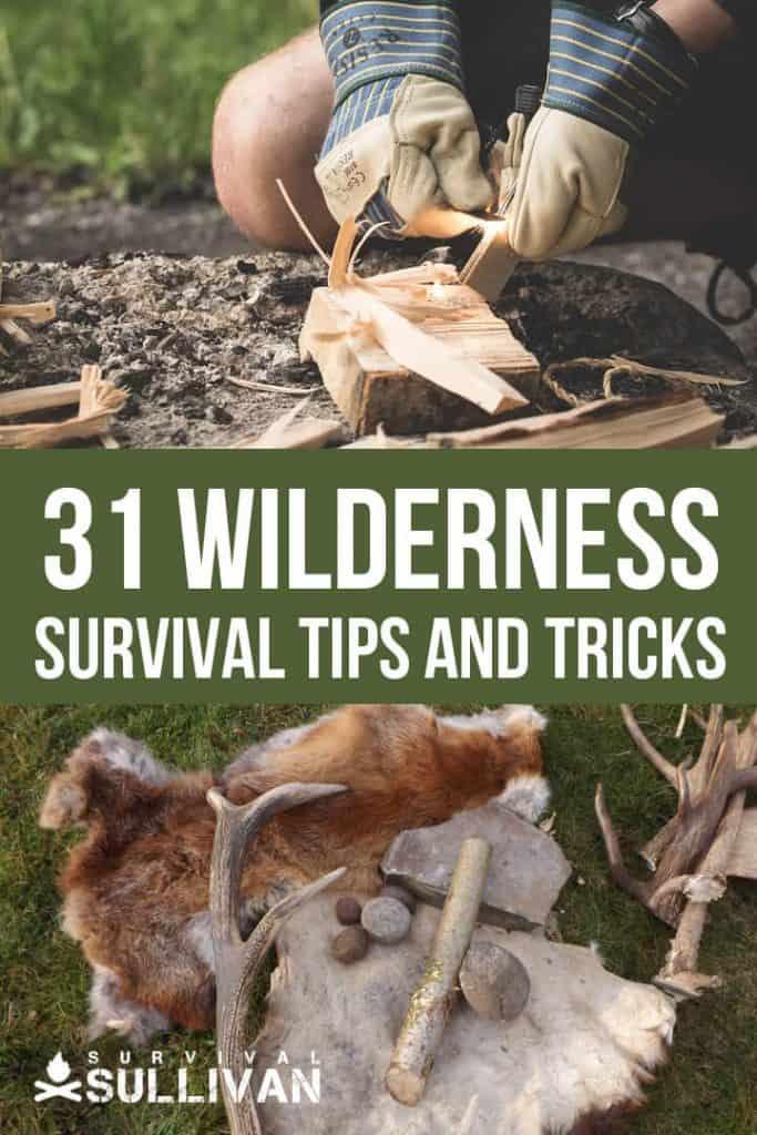 wilderness survival tips Pinterest image