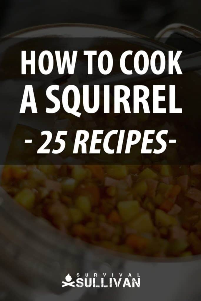 cooking a squirrel Pinterest image