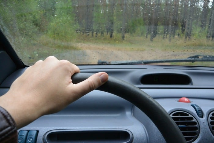 driving a car through the woods
