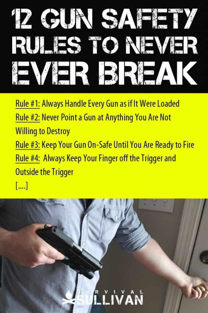 gun safety rules Pinterest image