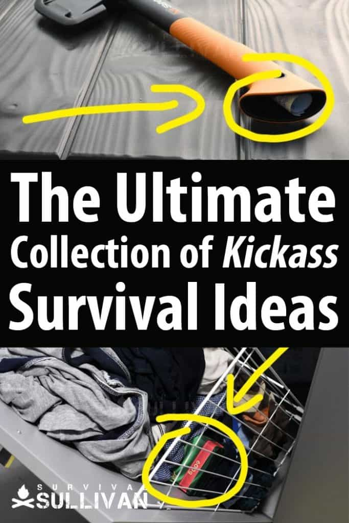 survival ideas Pinterest image