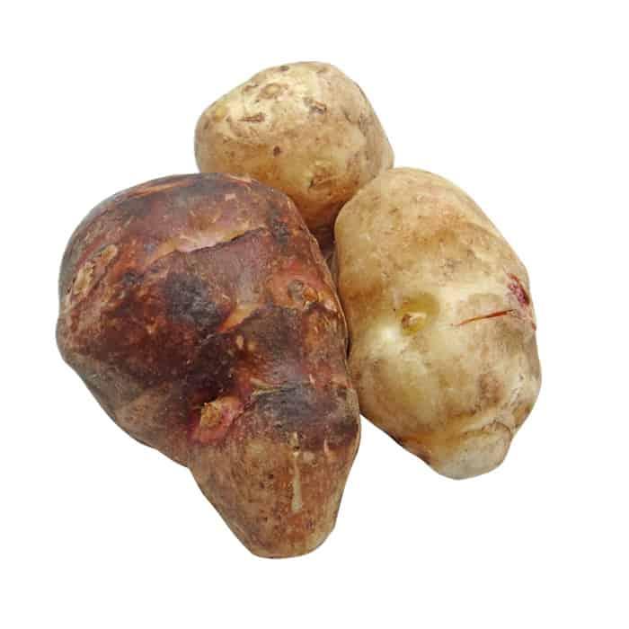 artichoke tubers