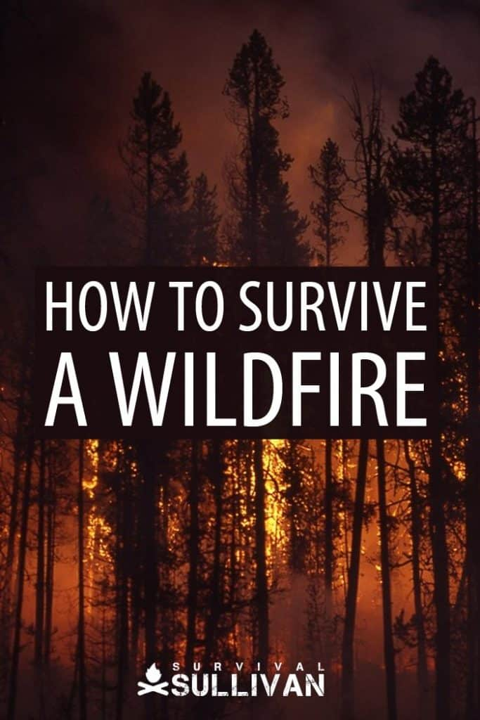 wildfire survival Pinterest image