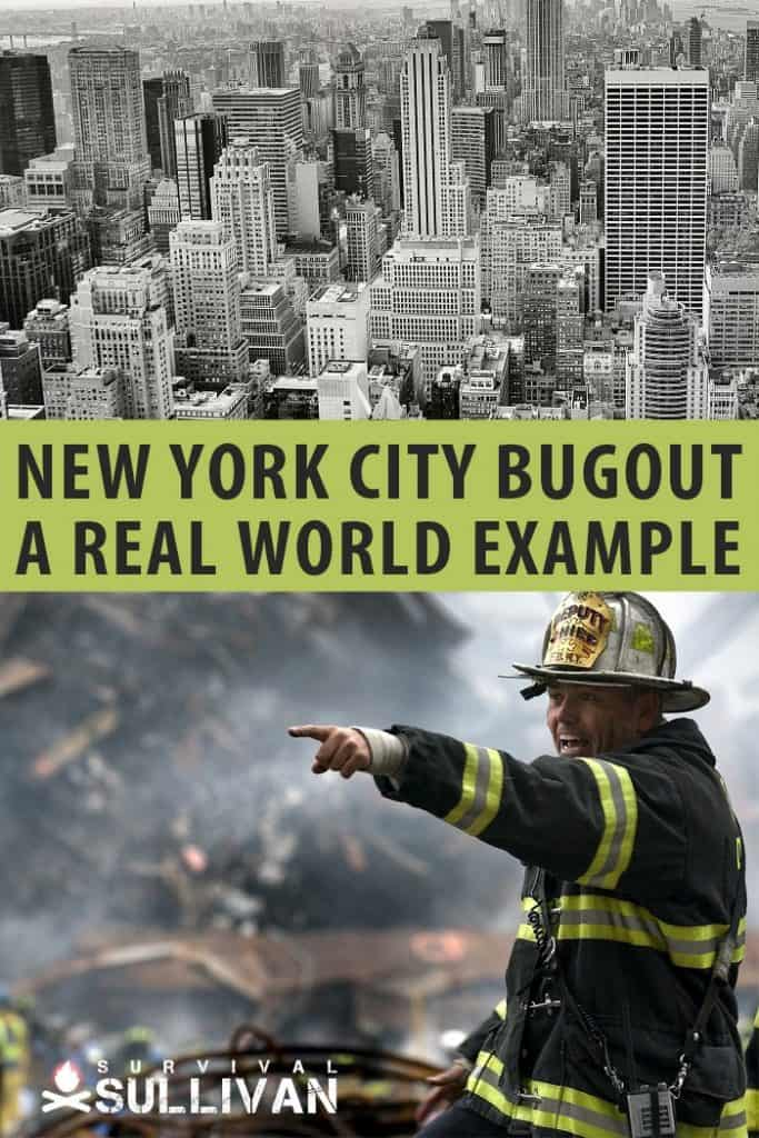 new york city bug out pinterest