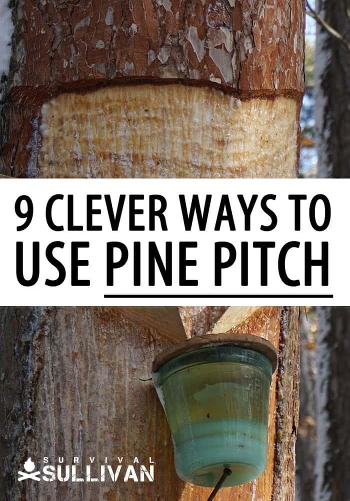pine resin uses pinterest image