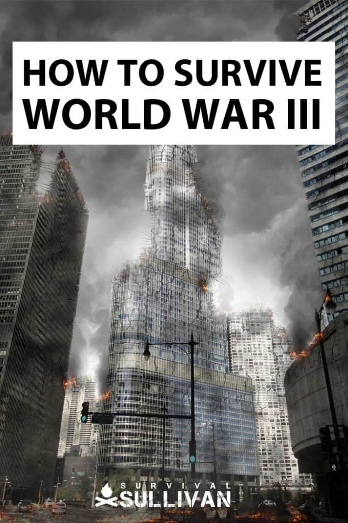 surviving world war 3 pinterest