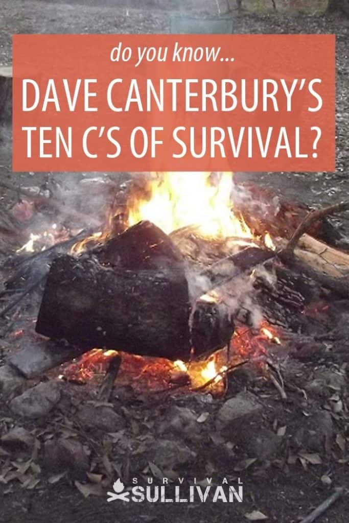 ten cs of survival pinterest image