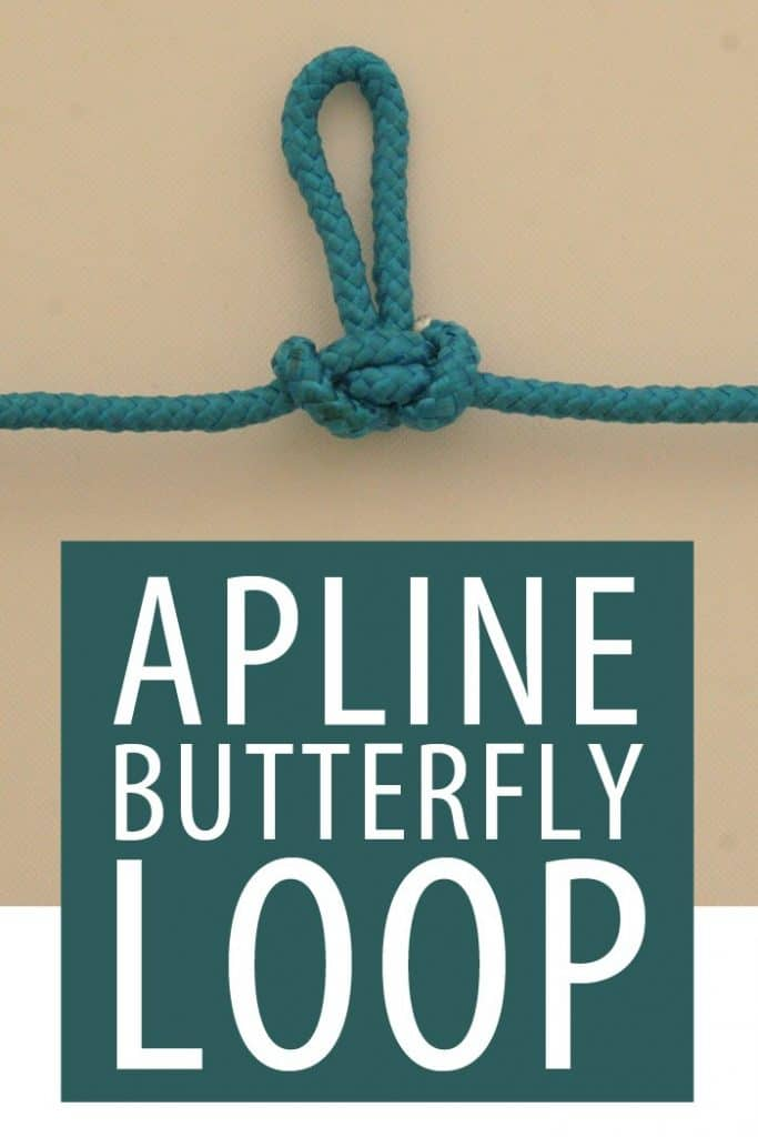 Alpine Butterfly Pinterest