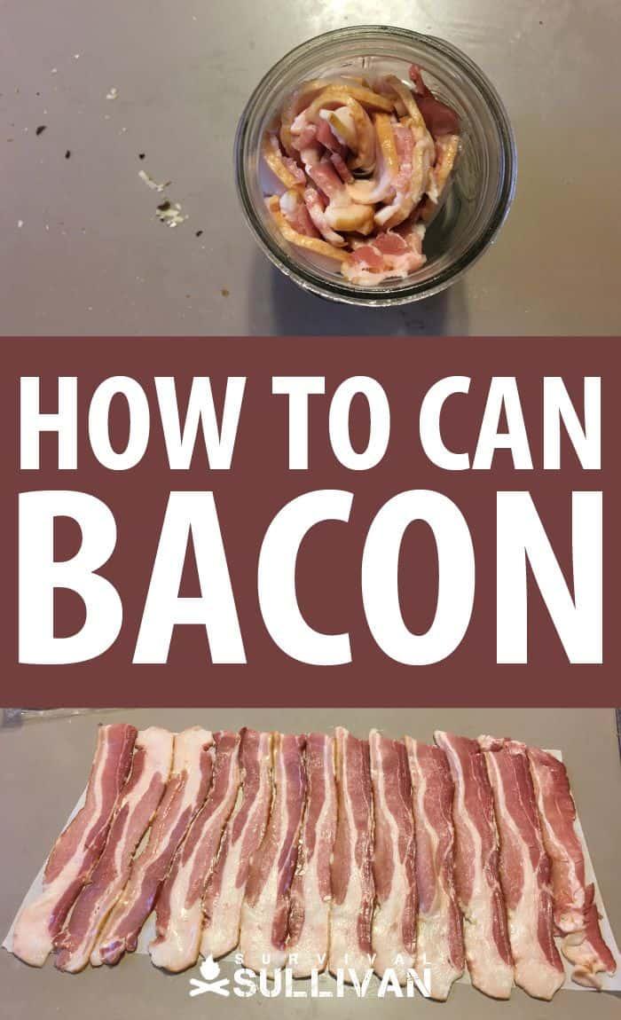 canning bacon pinterest image