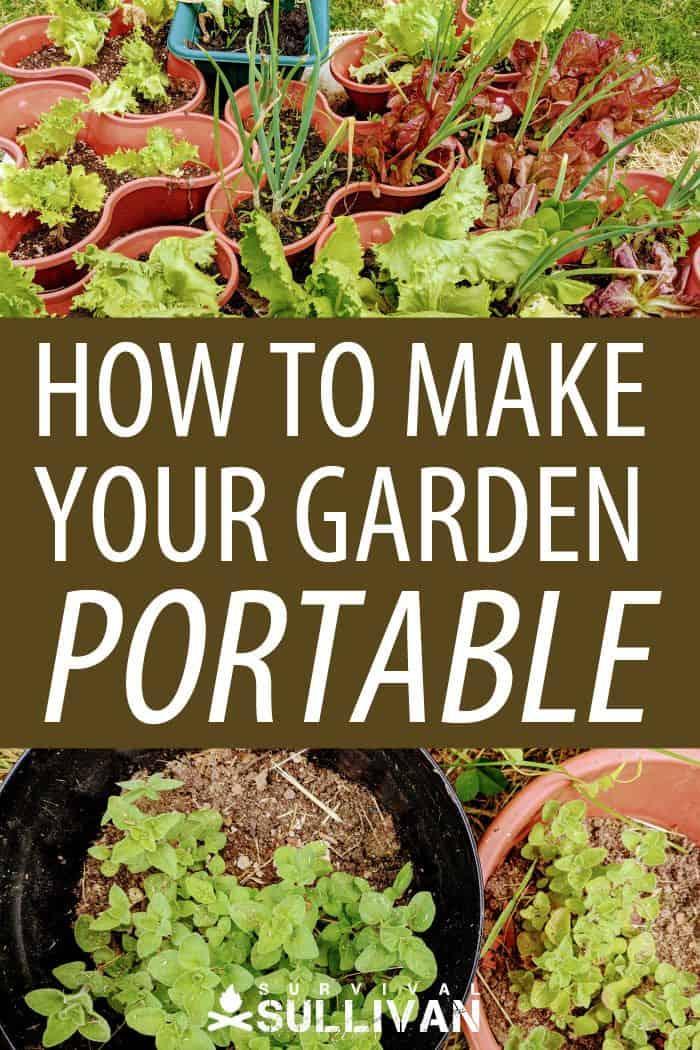 making your garden portable Pinterest image