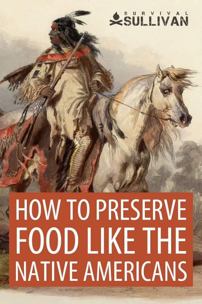 food preservation Pinterest image