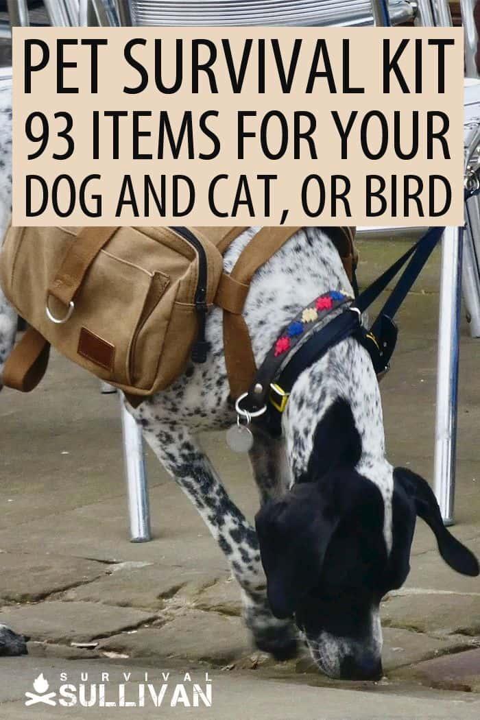 pet survival kit Pinterest image