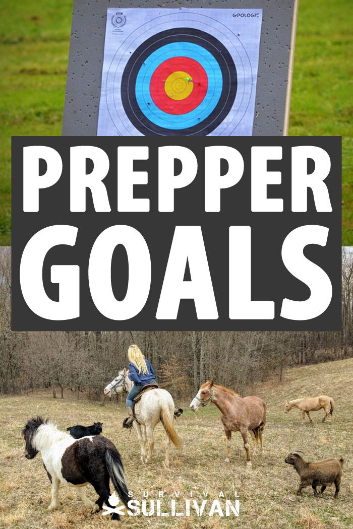 prepper goals Pinterest image
