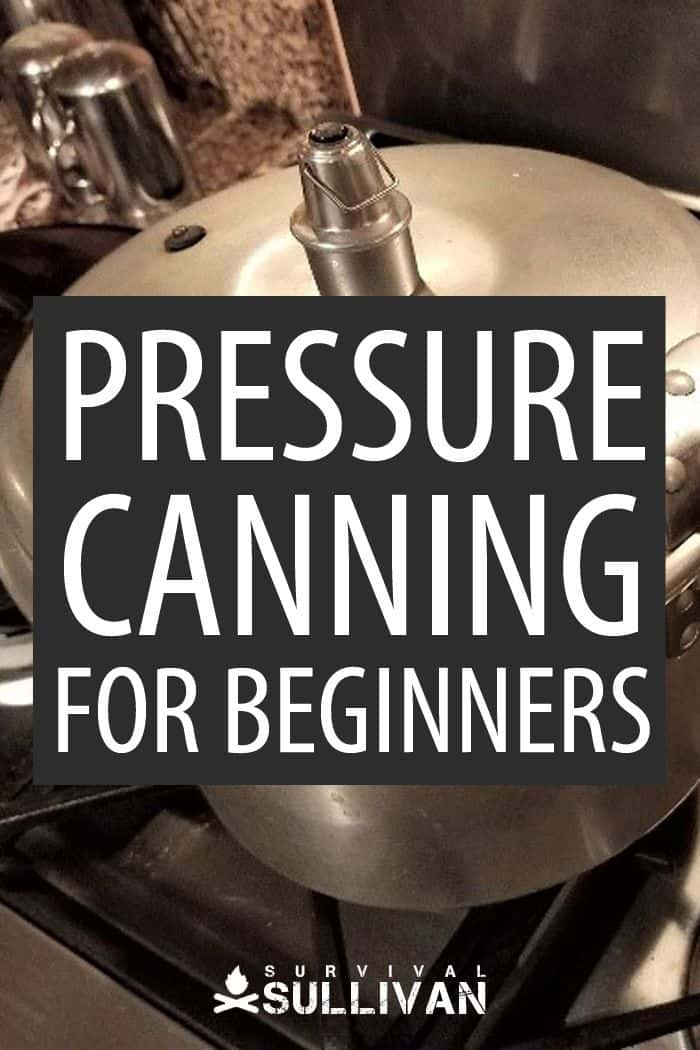 pressure canning for beginners pinterest