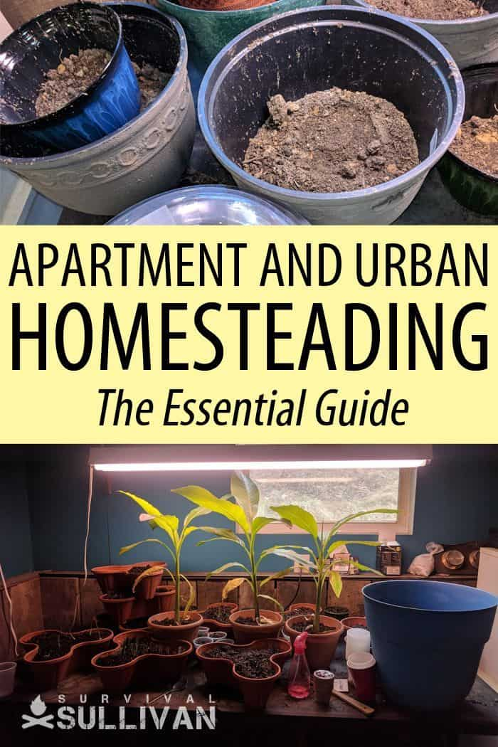 urban homesteading pin