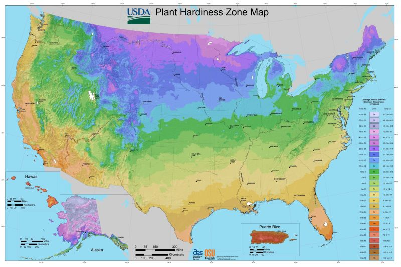 USDA hardiness zones map in the United States