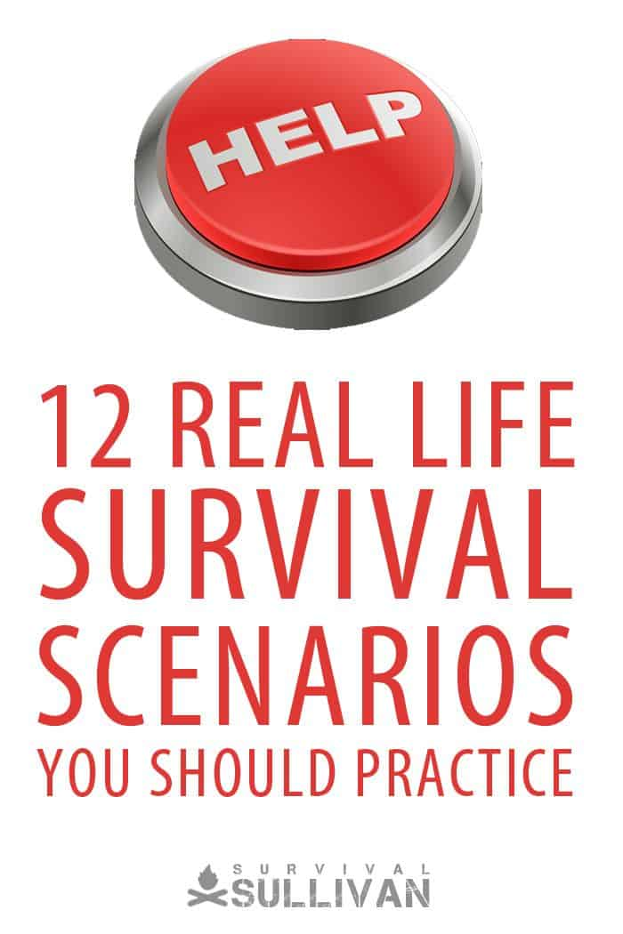 survival scenarios Pinterest image