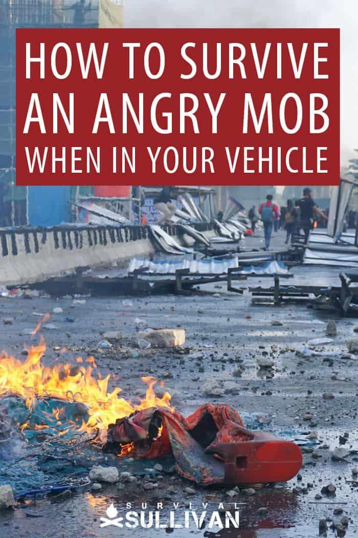 survive riot in car pinterest image
