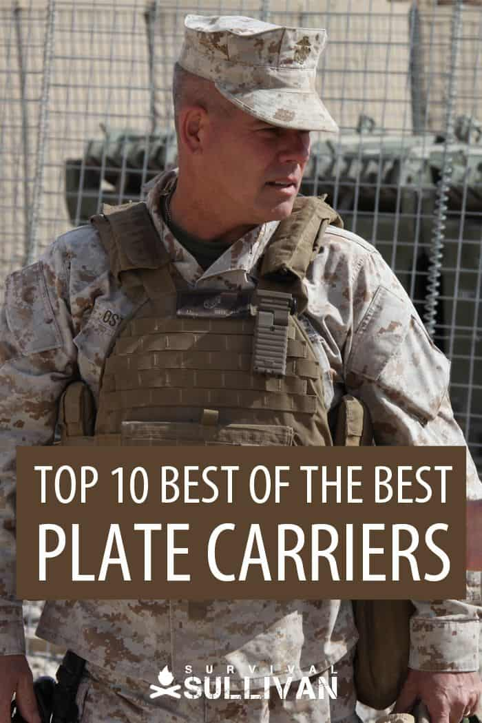 plate carriers Pinterest image