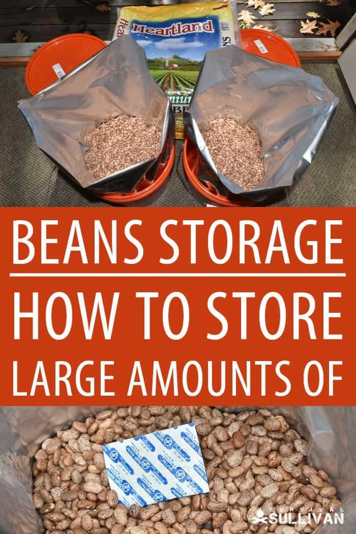 rice storage pinterest image