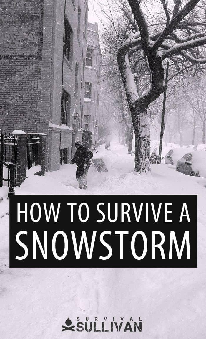 surviving a snowstorm Pinterest image