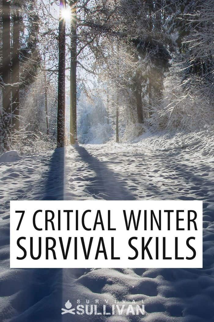 winter survival skills Pinterest image
