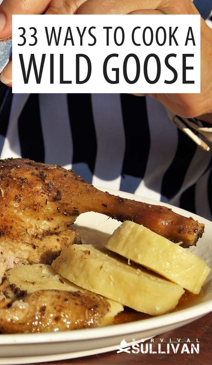 cooking a wild goose Pinterest image
