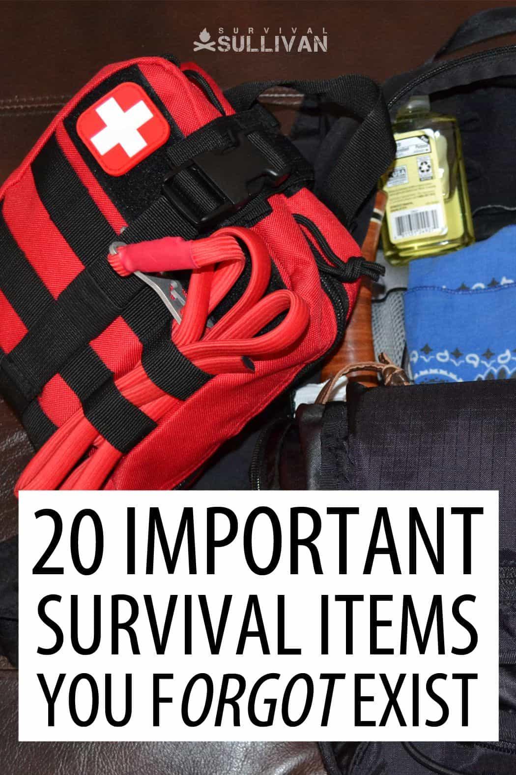 forgotten survival items pin
