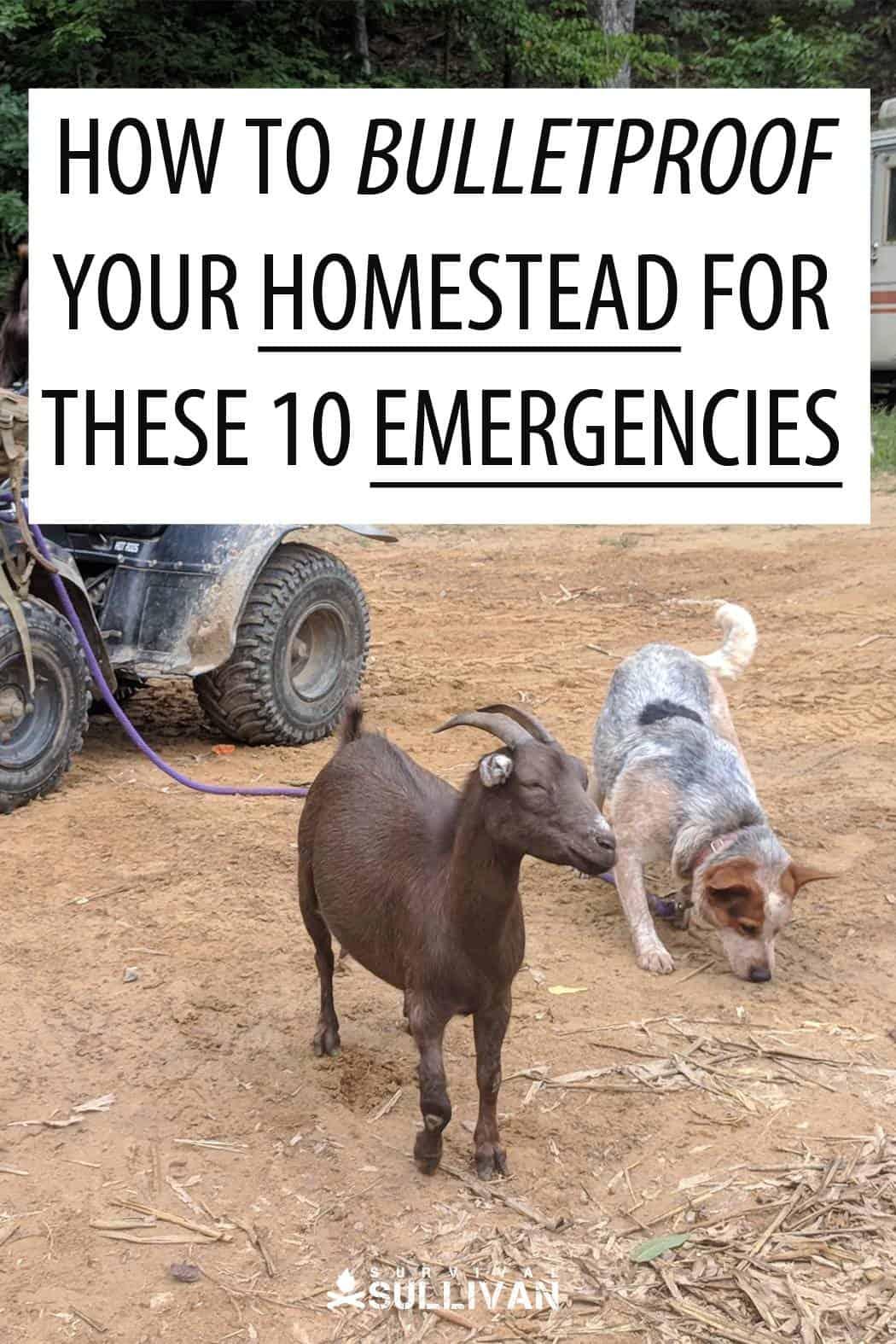 homestead emergencies Pinterest image