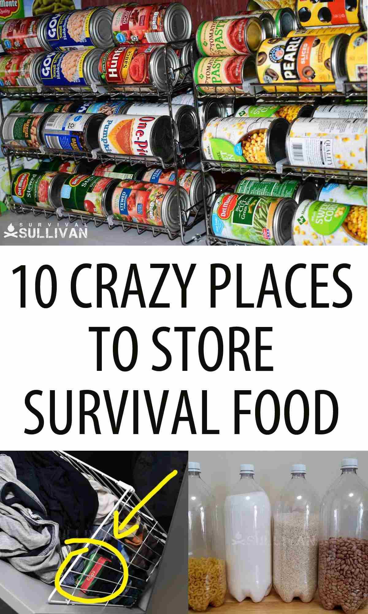 crazy food storage places Pinterest image