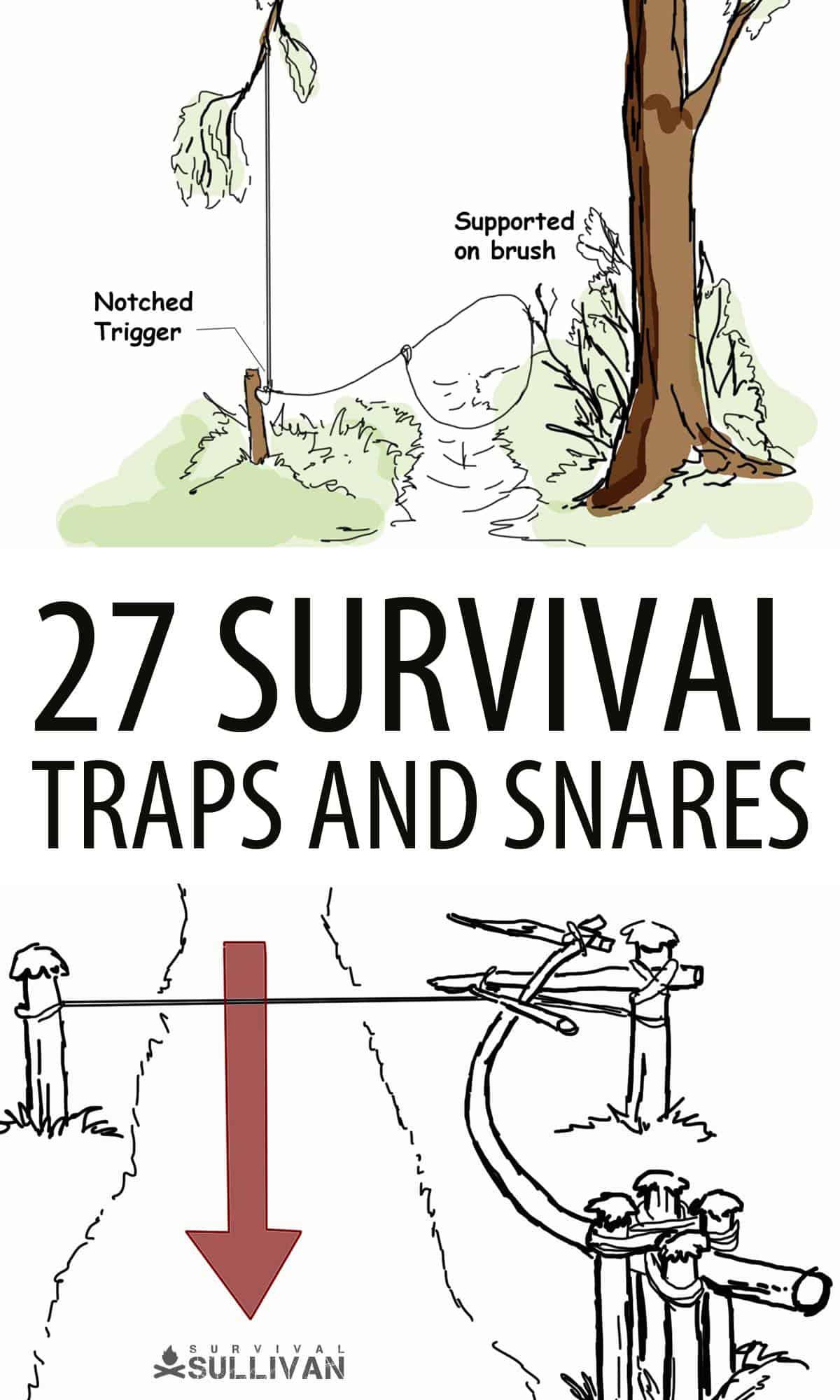 survival traps Pinterest image 2