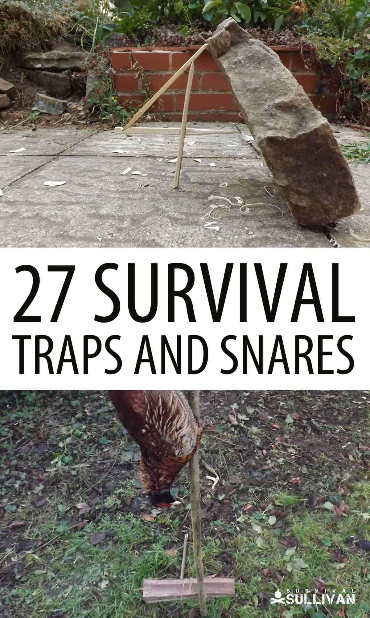 survival traps Pinterest image