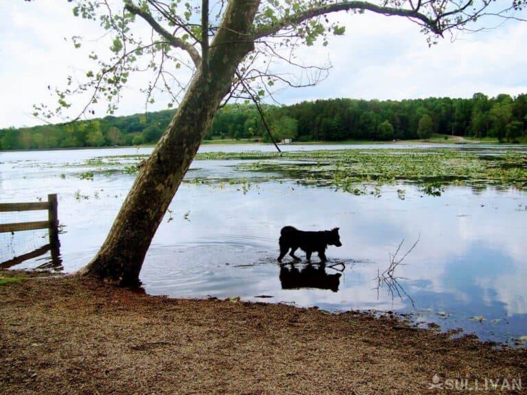Lake Alma in Athens County Ohio