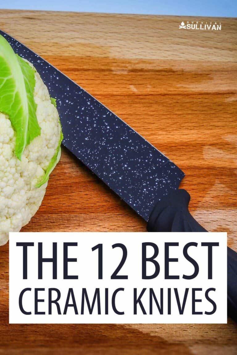 best ceramic knives Pinterest image