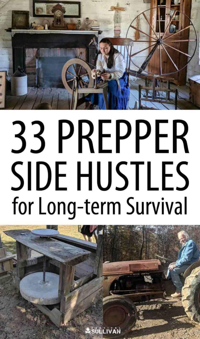 prepper side hustle Pinterest image