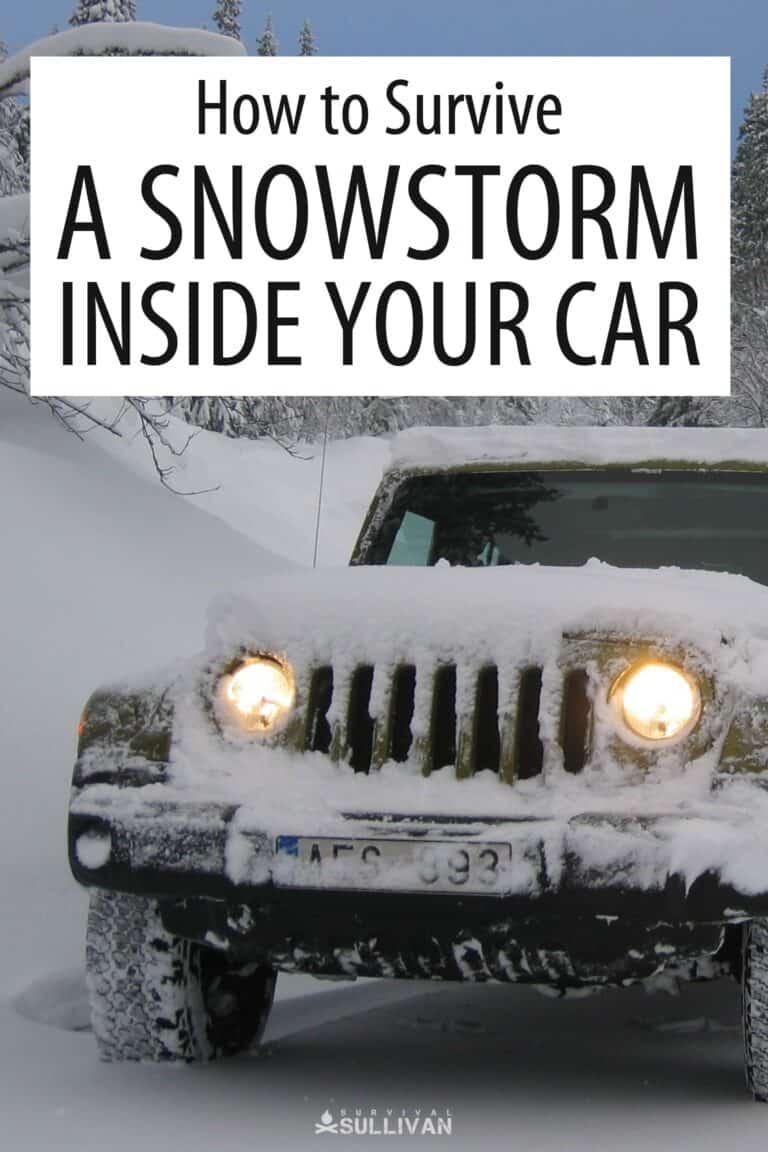 vehicle snowstorm survival Pinterest image